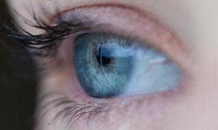 1_6_eye_ed